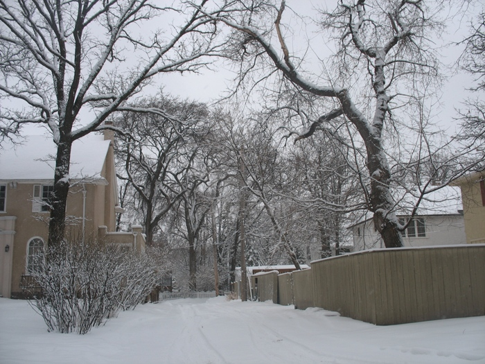 Виннипег погода в Виннипеге весна снег Winnipeg snow